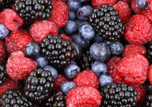 Mit Früchten, Gemüse und Tee einer Alzheimer-Demenz vorbeugen
