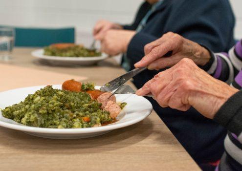 Webinar: Ernährung und Demenz